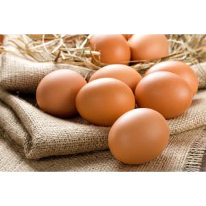 Яйца и яичные продукты